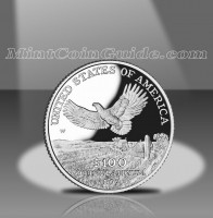 2000 Proof American Platinum Eagle Coin, Reverse
